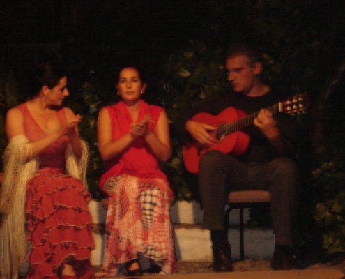 actividad-fiesta-flamenca