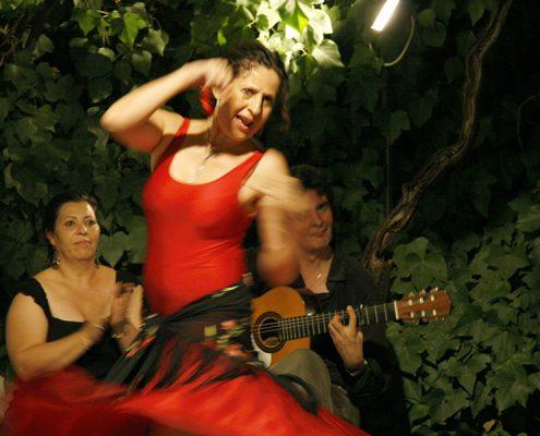 asum-flamenco