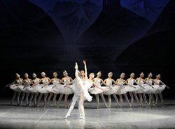 Teatro_lago cisnes