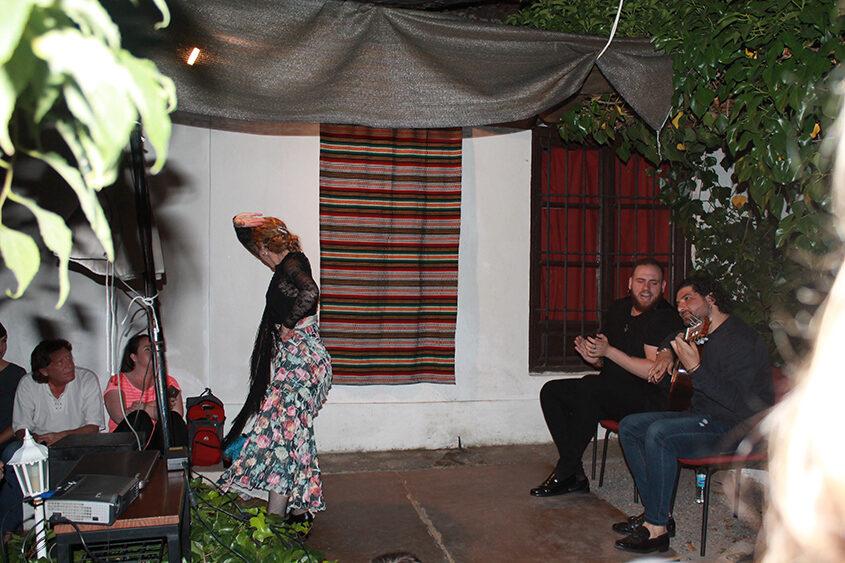actividad flamenco