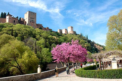 Vistas Almbra de Granada