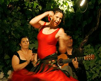 Attività di flamenco e impara lo spagnolo