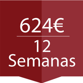 12 semnas cursos de español