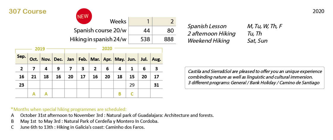 Spanish courses prices 307