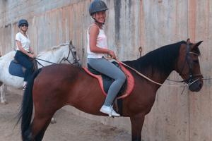 cursos de español para extranjeros y caballos