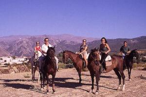 curso de equitacion y español