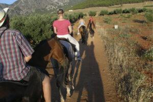 equitacion y curso de español